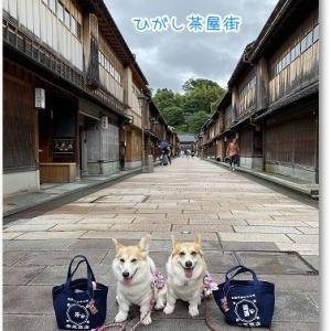 陽菜芹姉妹 5歳の誕生日旅行 in ひがし茶屋街