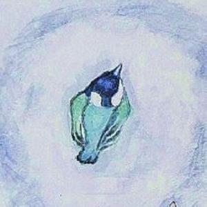シジュウガラの子育記 ー1