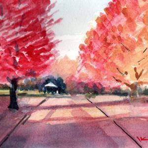 県立公園紅葉