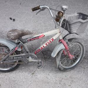 世界で一つだけのオリジナル自転車