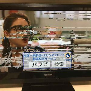 天気が悪くなるとテレビの画面にブロックノイズが出るので、ブースターを取りつけてみた。
