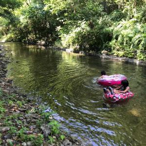 沖縄川遊びの穴場を完全網羅!秘密にしておきたい、源河川の上手な行き方遊び方を伝授!