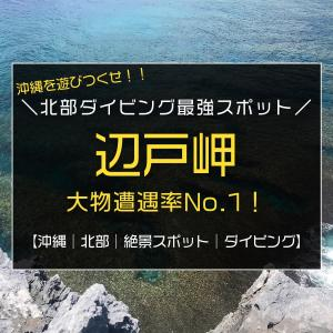 沖縄北部のダイビング最強スポット|本島最北端『辺戸岬』と与論島の間が凄すぎる