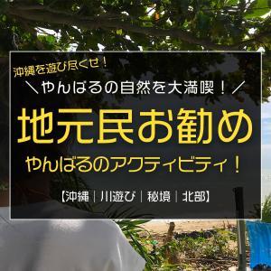 地元民がお勧めする沖縄北部やんばるのアクティビティ/アクティビティジャパンで探そう!