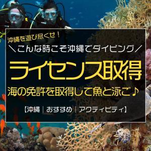 今がチャンス!こんな時こそ沖縄でダイビング!海のライセンスを取得して魚と泳ごう♪
