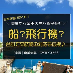 沖縄から奄美大島へ母子旅行/フェリーと飛行機のアクセス方法、台風で欠航時の対応方法伝授!