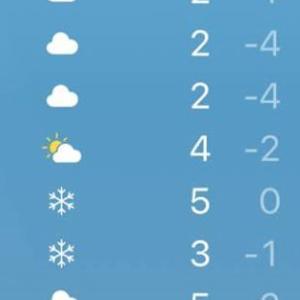 そりゃ、根雪にもなるわけないな