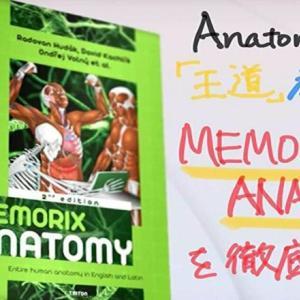 Anatomyの教科書といえば、Memorix Anatomy。現役海外医学生が徹底解説!