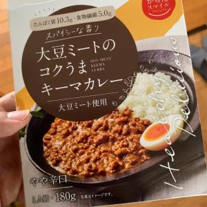 オススメの大豆ミートカレー