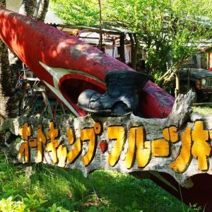 オートキャンプフルーツ村で春キャンプ!川遊びが楽しすぎる【前編】