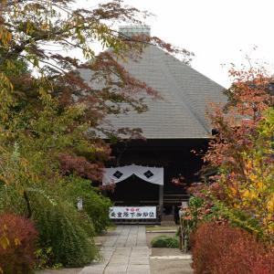 所沢市多聞院の秋