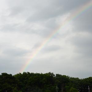 大雨の後に虹