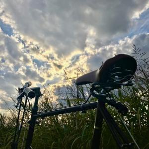 アマノジャクの自転車