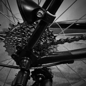 サイクリングが好きだった