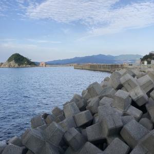5月27日 灼熱の高島 クロ釣り~デカ真鯛とご挨拶~