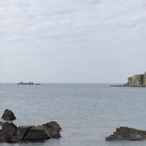 1月19日 初釣行 良型クロと第一子との出会い㊗