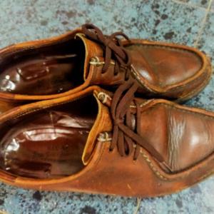 古い靴を履いて古い友人を訪ねる