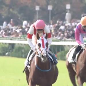 【19/11/17 レース評】ディアマンミノル 横山典弘JKに導かれデビュー戦で勝利