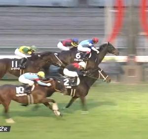 【19/12/14 レース評】アプルーヴァル 中京日経賞を押し切り3勝目