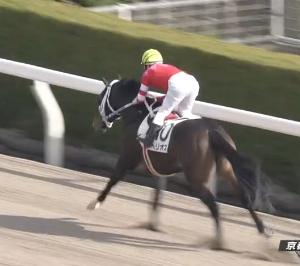 【20/01/13 レース評】ヘリオス 先行して直線突き放し2勝目。騸馬のオルフェーヴル産駒としては、これが中央初勝利となった