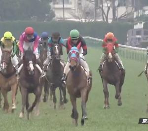 【20/02/16 レース評】セウラサーリ G1レーシングの期待馬が3戦目で未勝利V