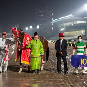 【20/10/08 レース評】マルシュロレーヌ やはり牝馬ダート界の新星だった。レディスプレリュードJpnⅡで初重賞制覇!