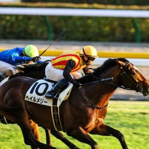 【20/11/15 レース評】ヘイルメリー (2勝クラス)を勝利し3勝目