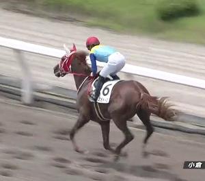 【21/07/11 レース評】エルモドーロ 未勝利