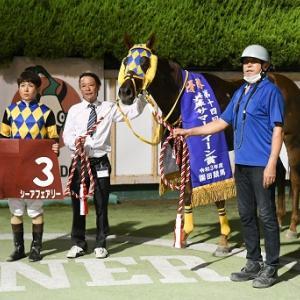 【21/07/23 レース評】シーアフェアリー 兵庫サマークイーン賞(重賞)
