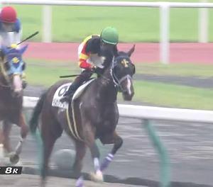 【21/09/12 レース評】キムケンドリーム 2勝クラス