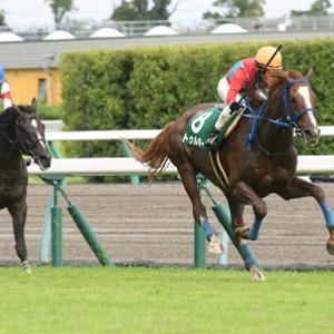 【21/09/18 レース評】トゥルボー 阪神ジャンプS(J・GⅢ) 重賞連勝V