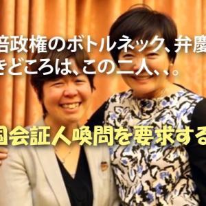 森友事件のキーパーソン・谷査恵子(元昭恵夫人秘書)さん、お帰りなさい!