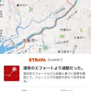 【マラソン】高槻シティハーフマラソン参戦記