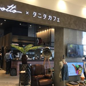【タニタカフェでお昼ご飯】外食でも食べ痩せ叶う