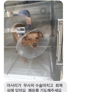 韓国で受けた中性化手術のお話