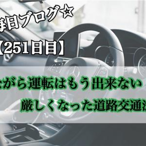 【251日目】道路交通法改正!ながらスマホはもう出来ない!