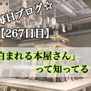 【267日目】「泊まれる本屋さん」に行ってきたよ!