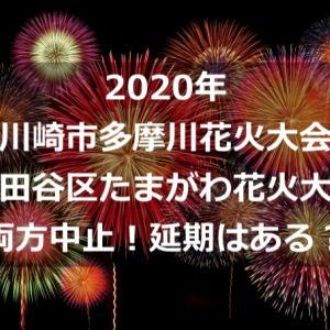 2020年川崎市多摩川花火大会・世田谷区たまがわ花火大会は両方中止!延期はある?