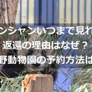 シャンシャンいつまで見れる?返還の理由はなぜ?上野動物園の予約方法は?
