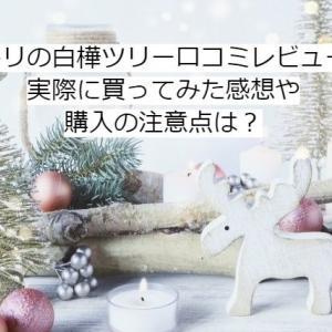 ニトリの白樺ツリー口コミレビュー!実際に買ってみた感想や購入の注意点は?