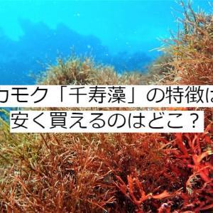 アカモク「千寿藻」の口コミや評判は?最安値の販売店はどこ?