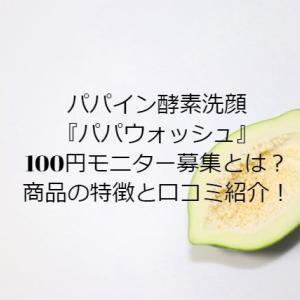 パパウォッシュ100円モニター口コミ!