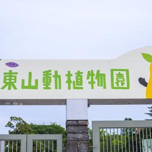 東山動物園ナイトズー2019年 日程、チケット、駐車場、イベント情報について徹底調査!