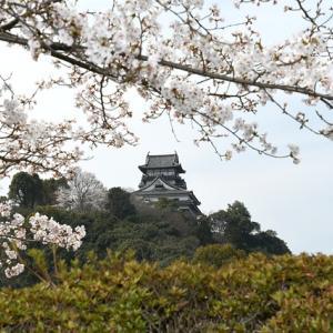 愛知県 国宝犬山城が補修工事