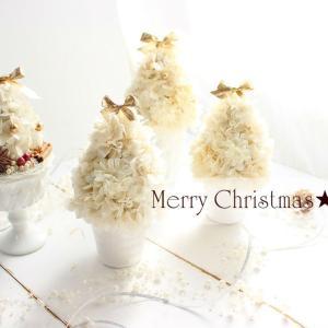 クリスマスアレンジの販売がスタート★ミニツリー★yuki*florist.