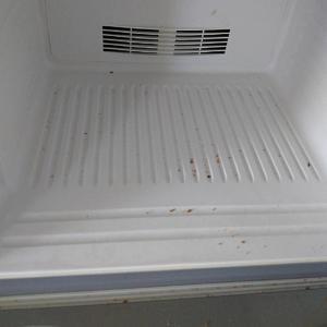 冷蔵庫とお風呂の掃除