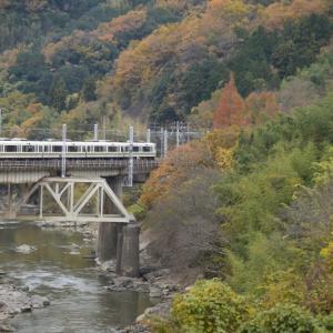 大和路線。大和川と紅葉もどきカット