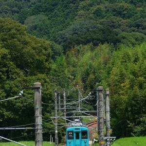 和歌山線。吉野口界隈で緑を撮る。