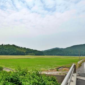 【名ポタ】BROMPTONで琵琶湖行ってみようポタ(2)