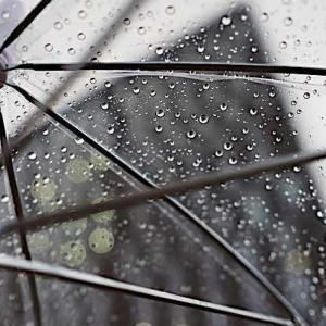 雨が降るといつも気になる。